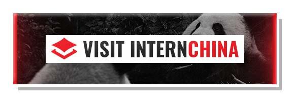 Visit Internchina Button