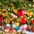 close-up-of-christmas-tree-898733426-5c79da8a46e0fb00018bd7fb