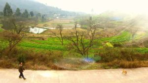 Countryside outside of Chengdu
