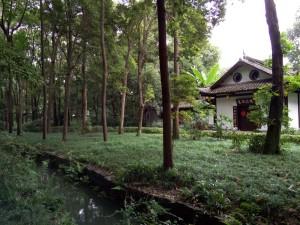 InternChina Chengdu Du Fu Cottage