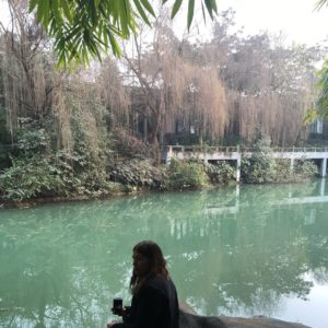 Exploring the parks in Chengdu
