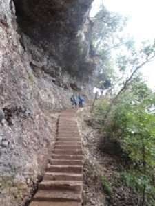 Steep Steps down Mount Qing Cheng