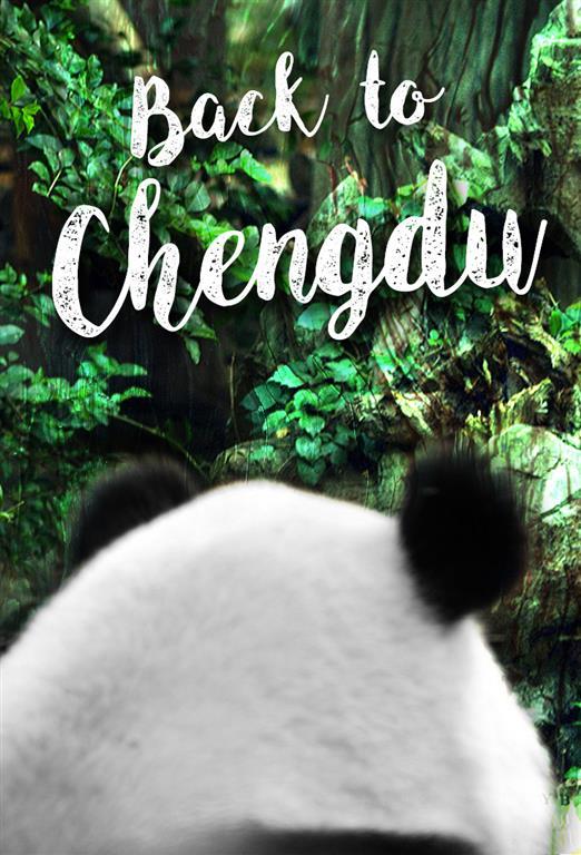 back to chengdu