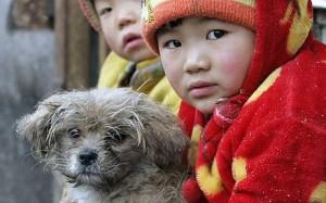 InternChina - Chinese kids and their dog