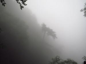 InternChina - Misty mountain high