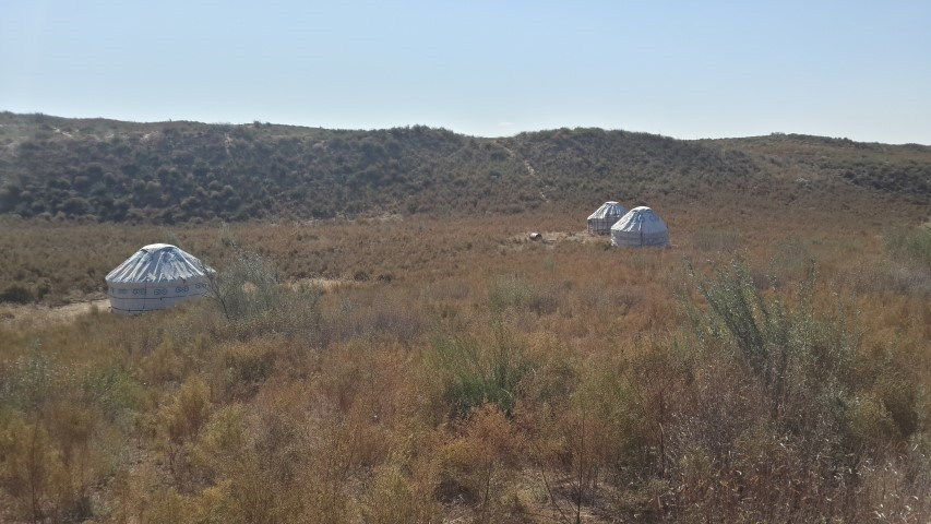InternChina - our yurts in the desert, three of them but we all slept in one and there was no one else there!!  -InternChina