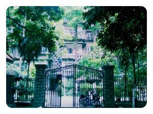 InternChina - Southwest University for Nationalities Chengdu