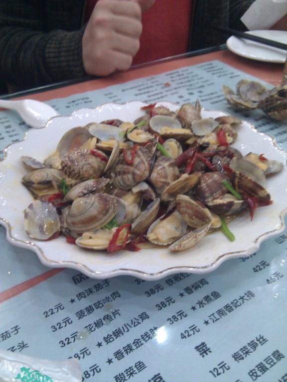 InternChina - Qingdao Clams